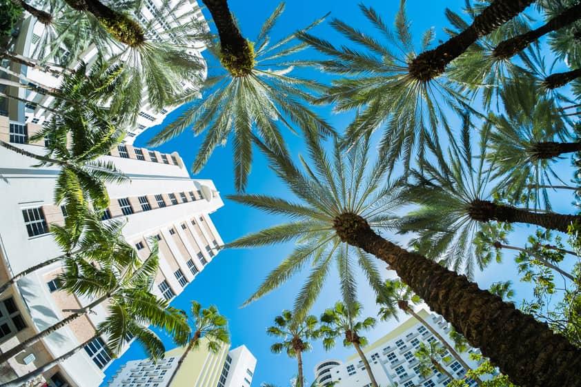10 Cidades do Mundo mais Visitadas por Brasileiros - Miami