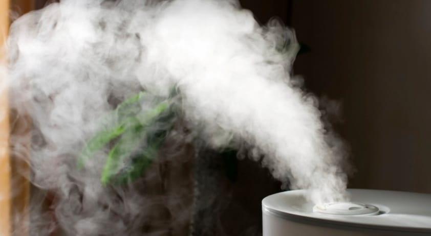Quais são as Principais Causas de Problemas Respiratórios?