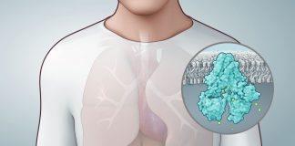 Saiba Tudo Sobre a Fibrose Cística