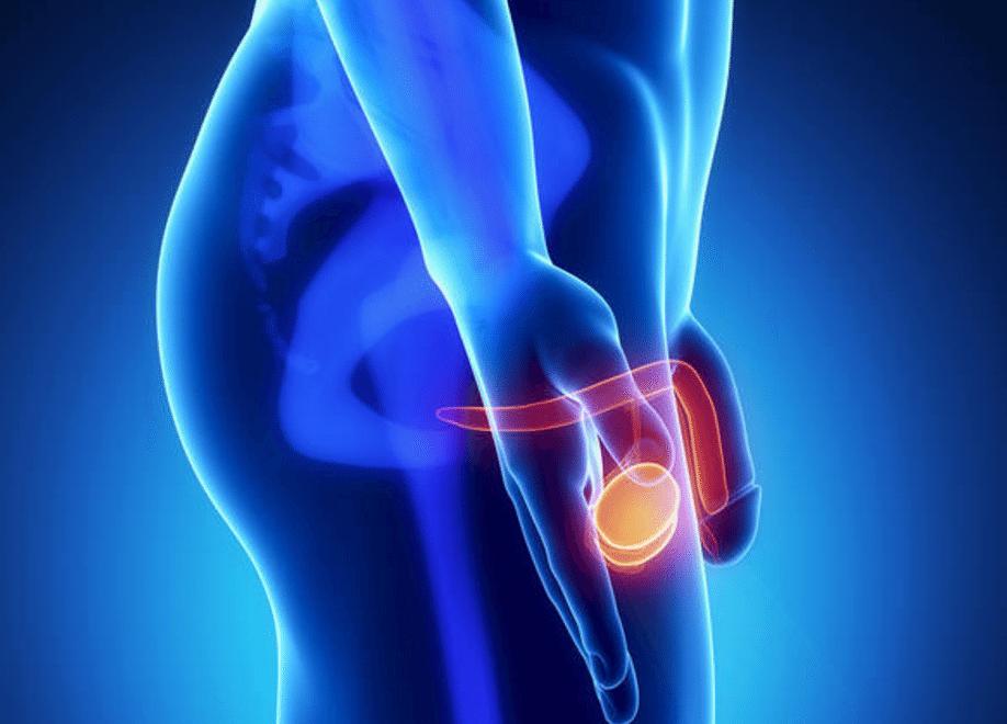 Quais são as causas da dor nos testículos?
