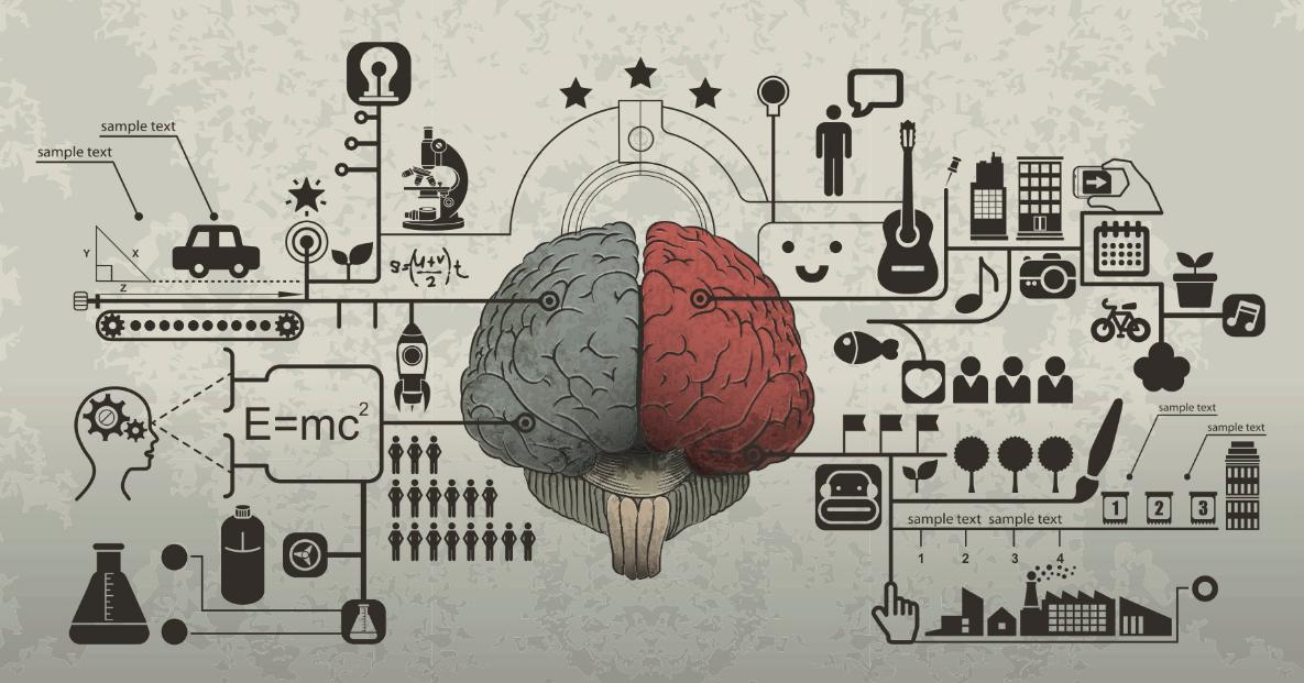 Realmente Usamos Somente 10% do Nosso Cérebro?
