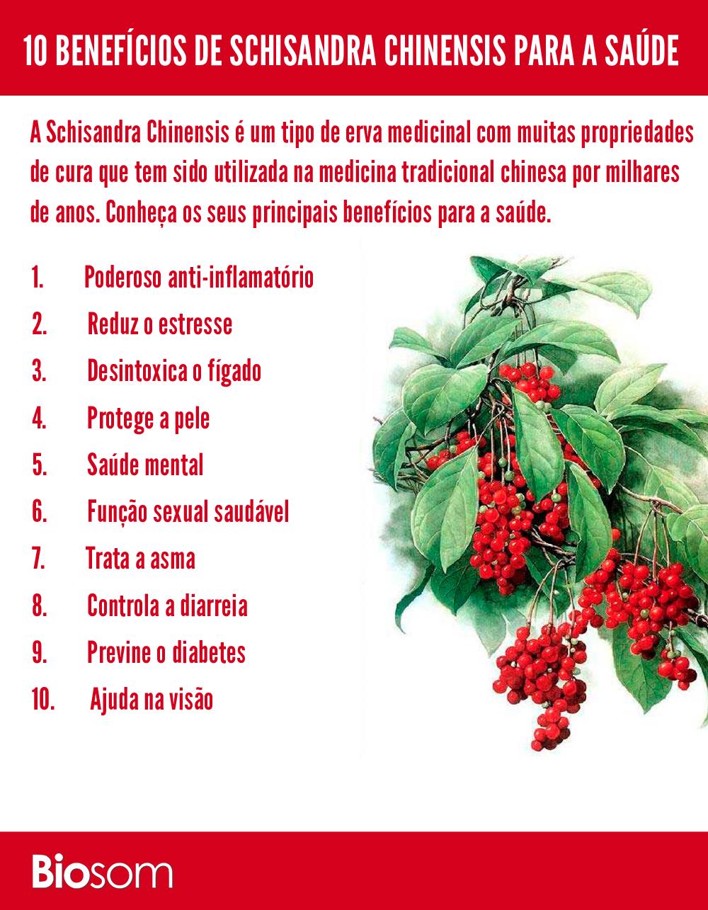 benefícios do Schisandra Chinensis para a saúde