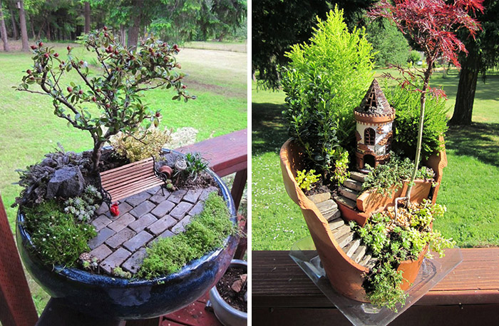 48 Sugestões De Jardins em Miniatura Para Decorar a Casa