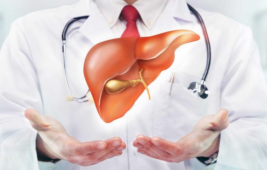 Tudo Sobre a Gordura no Fígado