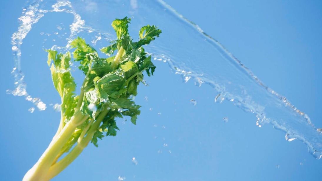 10 Alimentos Incríveis que Ajudam a Hidratar a Pele