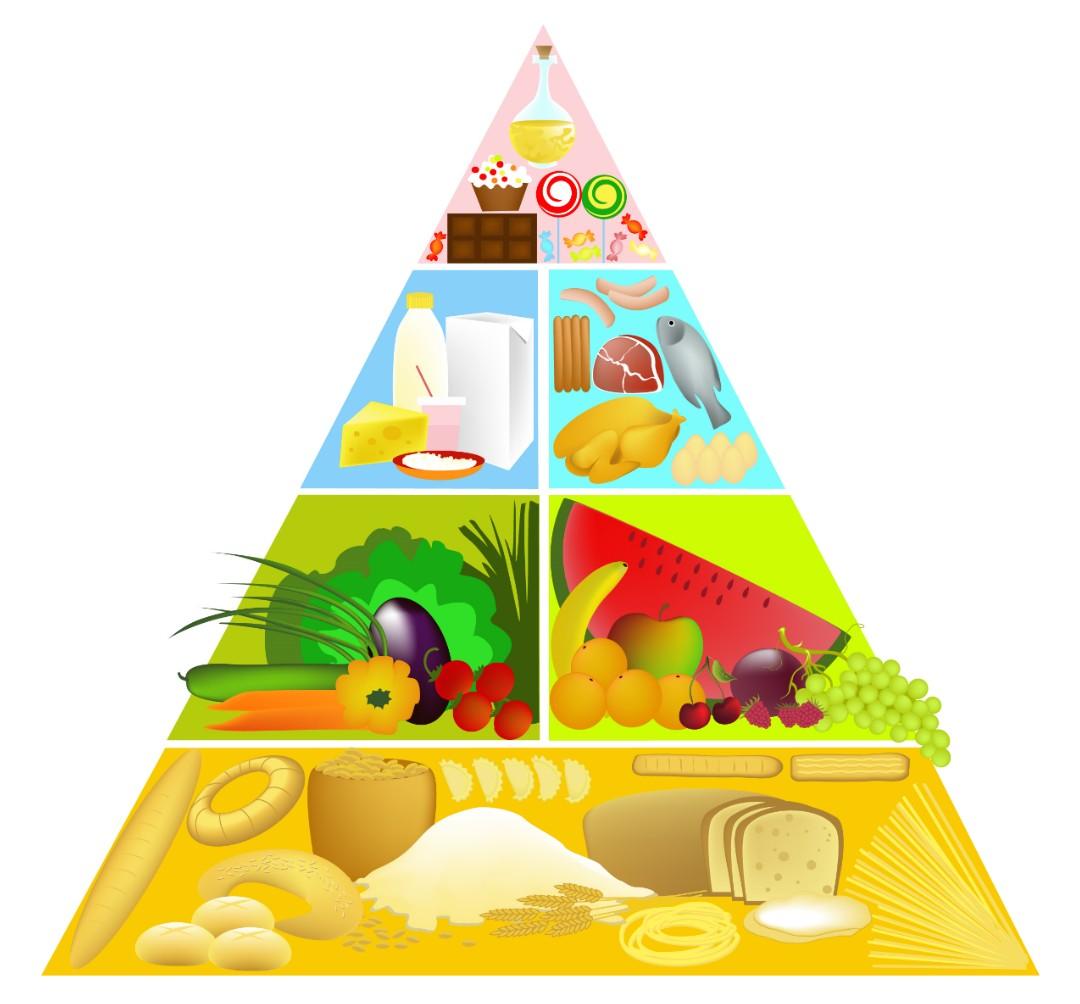 Nova Pirâmide Alimentar: Conheça os Principais Nutrientes de Cada Grupo!