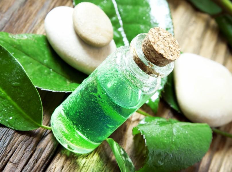 10 Benefícios do Óleo de Tea tree (Melaleuca) para Beleza e Saúde